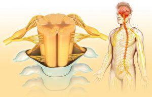 преднокоренчева увреда лечение
